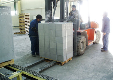 China Autoclaved Aerated Concrete Equipment Fully Automatic Fly Ash Brick Plant factory